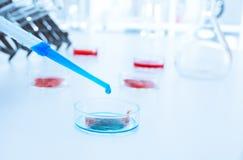 Carne cultivada en el laboratorio conditions.lab Imagen de archivo libre de regalías