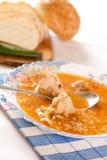 Carne da carne e sopa do arroz Fotografia de Stock Royalty Free