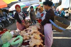 Carne da galinha Imagens de Stock Royalty Free
