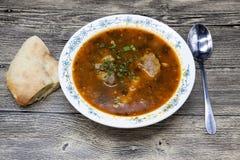 Carne da sopa da carne com pimenta e tomate Pratos tradicionais do Médio Oriente, Ásia Sopa Shurpa Fotografia de Stock