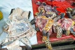 Carne da tartaruga em um mercado em Iquitos, Peru foto de stock