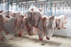 Carne da vitela no refrigerador imagens de stock