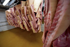Carne de carne de porco fotografia de stock