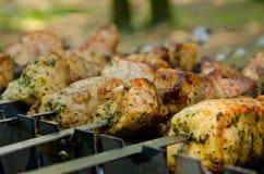 Carne de carne de porco Foto de Stock Royalty Free