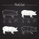 A carne de carne de porco corta o esquema ilustração stock
