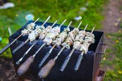 Carne de carne de porco (shashlik) na grade em um fumo Imagem de Stock