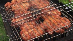Carne de Chiken no fumo da grade do assado video estoque