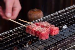 Carne de Japão A5 Foto de Stock Royalty Free