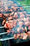 carne de la carne asada en los pinchos en el fuego abierto Imágenes de archivo libres de regalías