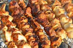 carne de la carne asada en los pinchos en el fuego abierto Imagen de archivo libre de regalías