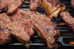 Carne de la comida - el pollo y la carne de vaca en barbacoa asan a la parrilla Fotos de archivo libres de regalías