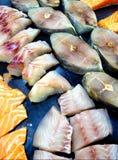 Carne de peixes congelada Imagem de Stock Royalty Free