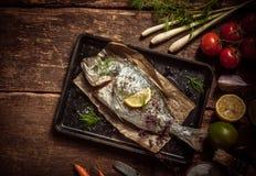 Carne de peixes em uma bandeja com ervas e especiarias imagens de stock