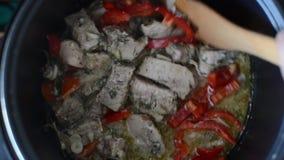 Carne de porco cozido em um potenciômetro vídeos de arquivo