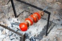 Carne de porco cozinhada na grade Carne cozinhada nos carvões Carne de porco que é fogo preparado Carne de porco Kebab Carne com  imagem de stock royalty free
