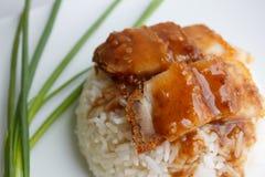 Carne de porco friável com o fim do arroz ascendente e a cebola da mola Foto de Stock