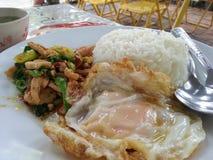 Carne de porco friável do arroz Foto de Stock