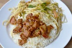 A carne de porco gorda doce no molho e na agitação do molho fritou o broto de feijão com o tofu no arroz Imagens de Stock