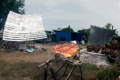 Carne de porco Solar-assada de um vidro Foto de Stock