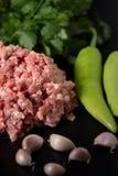 Carne de porco triturada Imagens de Stock Royalty Free