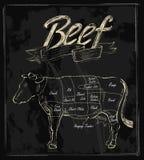 Carne de vaca dibujada mano del vector ilustración del vector