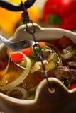 Carne de vaca en la sopa imagen de archivo libre de regalías