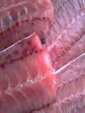 Carne dei raggi di aquila Fotografie Stock