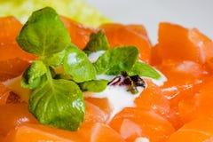 Carne del atún con la salsa verde Imágenes de archivo libres de regalías