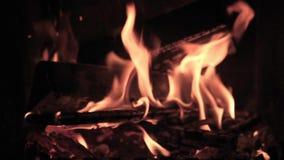 Carne del barbecue sul fuoco non aperto picnic di estate nel paese stock footage