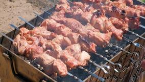 Carne del cuoco dell'uomo sugli spiedi Carne arrostita di giri della mano dell'uomo su mangal Cottura dell'alimento di picnic Pre video d archivio