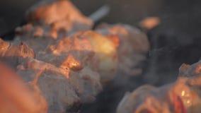 Carne del cuoco dell'uomo sugli spiedi Carne arrostita di giri della mano dell'uomo su mangal Cottura dell'alimento di picnic Pre archivi video