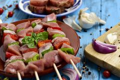 Carne del pavo y pinchos crudos de las verduras Fotografía de archivo libre de regalías