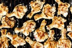Carne del pollo en la parrilla Fotos de archivo libres de regalías