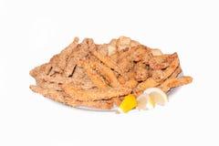 Carne del pollo fritto Fotografia Stock Libera da Diritti