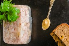 Carne del ?spide fotos de archivo libres de regalías