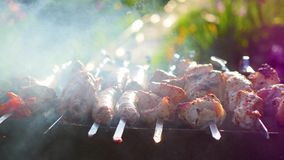 Carne deliciosa de la barbacoa cocinada en la parrilla Un partido de la barbacoa Los pedazos del cerdo de carne asaron en un fueg metrajes