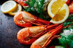 Carne deliciosa do camarão e de caranguejo com ervas e limão Fotografia de Stock