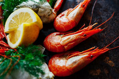 Carne deliciosa do camarão e de caranguejo com ervas e o ascendente próximo do limão Imagens de Stock Royalty Free