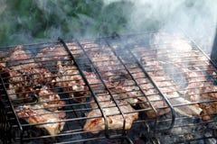 Carne deliziosa sul BBQ Fotografie Stock