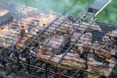 Carne deliziosa sul BBQ Immagini Stock Libere da Diritti