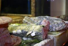 Carne dell'alligatore, Canton, Cina Immagini Stock
