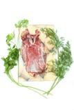 Carne dell'oca con verde Fotografia Stock