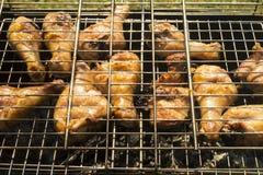 Carne della gallina su rete Immagine Stock