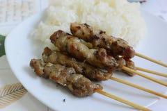 Carne di maiale arrostita con riso appiccicoso Fotografia Stock Libera da Diritti