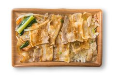 Carne di maiale arrostita del sale con riso giapponese Fotografia Stock Libera da Diritti