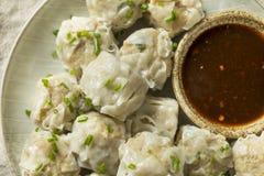 Carne di maiale casalinga Shu Mai Dumplings immagini stock