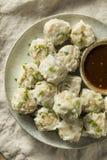 Carne di maiale casalinga Shu Mai Dumplings fotografia stock libera da diritti