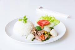 Carne di maiale con Fried Black Pepper e riso Immagini Stock Libere da Diritti