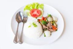 Carne di maiale con Fried Black Pepper e riso Fotografia Stock Libera da Diritti
