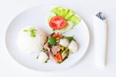 Carne di maiale con Fried Black Pepper e riso Fotografia Stock
